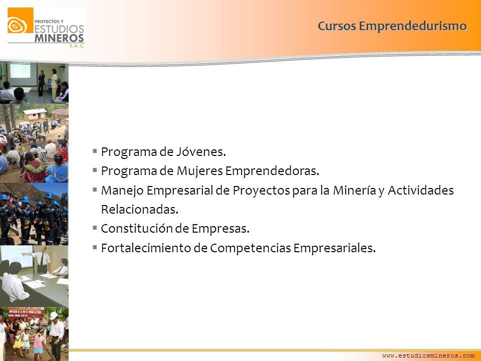 Cursos Emprendedurismo