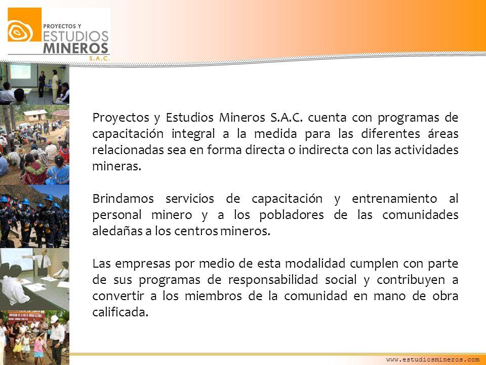 Proyectos y Estudios Mineros S. A. C