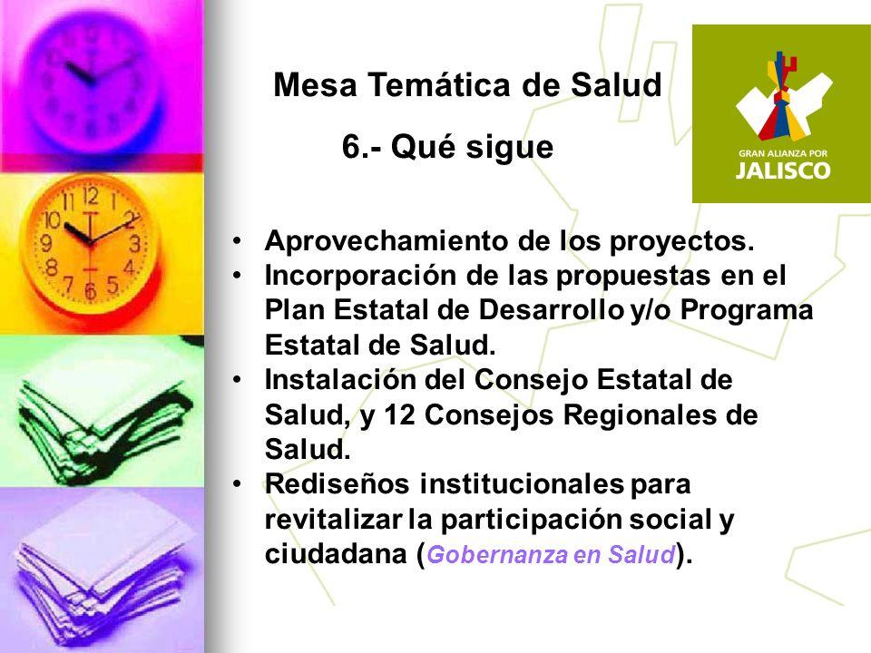 Mesa Temática de Salud 6.- Qué sigue Aprovechamiento de los proyectos.