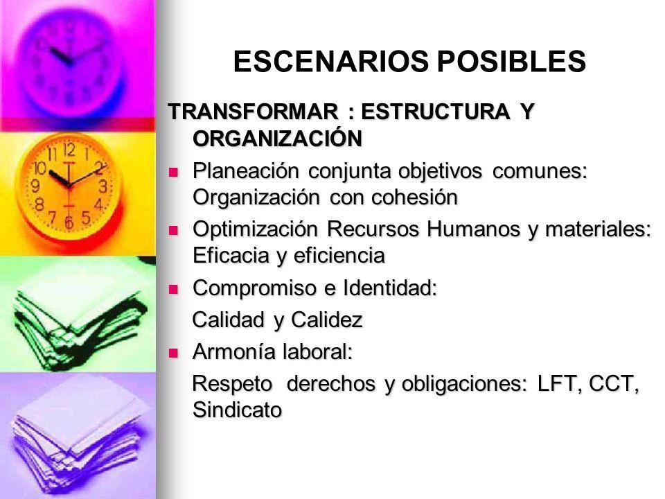 ESCENARIOS POSIBLES TRANSFORMAR : ESTRUCTURA Y ORGANIZACIÓN