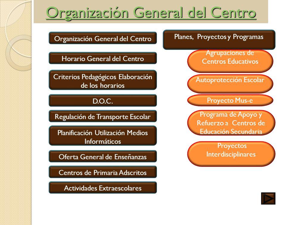 Organización General del Centro