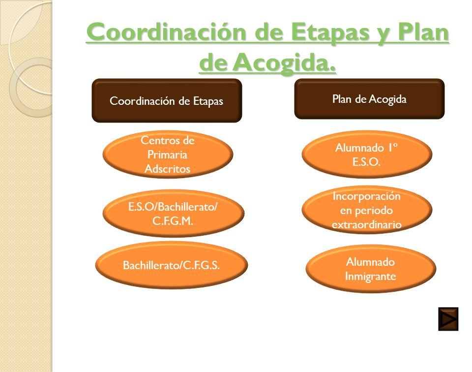 Coordinación de Etapas y Plan de Acogida.