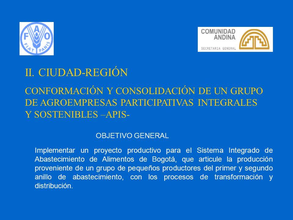 II. CIUDAD-REGIÓN CONFORMACIÓN Y CONSOLIDACIÓN DE UN GRUPO DE AGROEMPRESAS PARTICIPATIVAS INTEGRALES Y SOSTENIBLES –APIS-