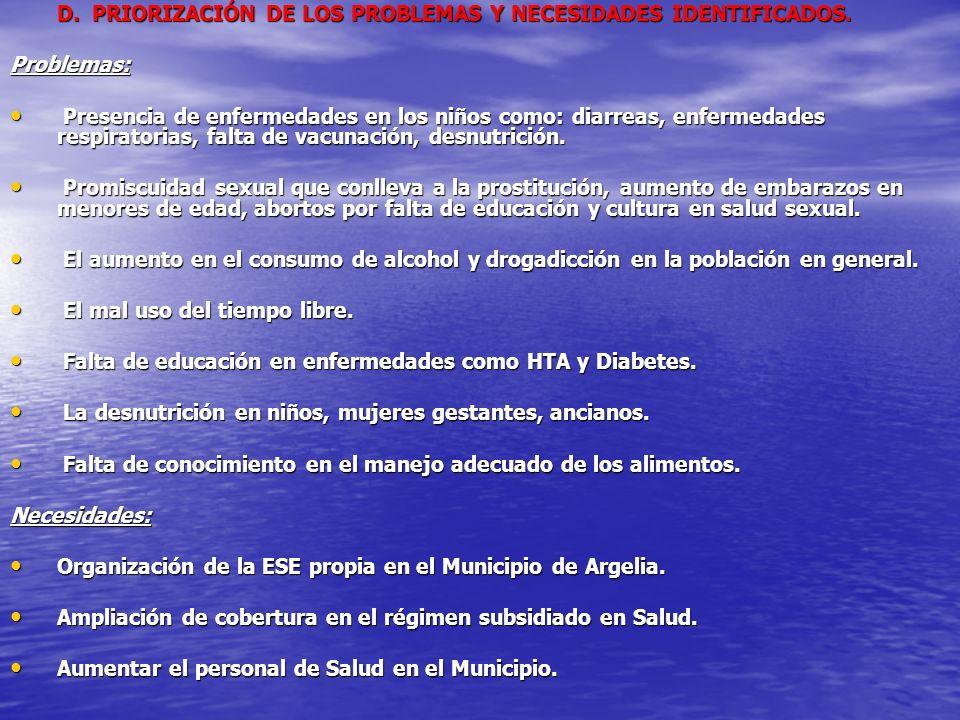 D. PRIORIZACIÓN DE LOS PROBLEMAS Y NECESIDADES IDENTIFICADOS.