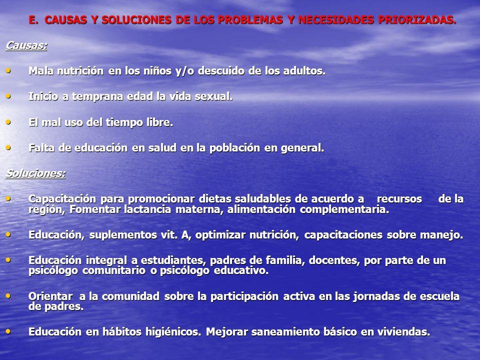 E. CAUSAS Y SOLUCIONES DE LOS PROBLEMAS Y NECESIDADES PRIORIZADAS.