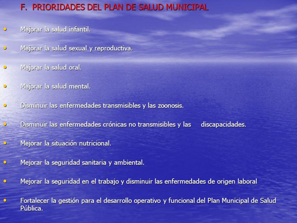 F. PRIORIDADES DEL PLAN DE SALUD MUNICIPAL