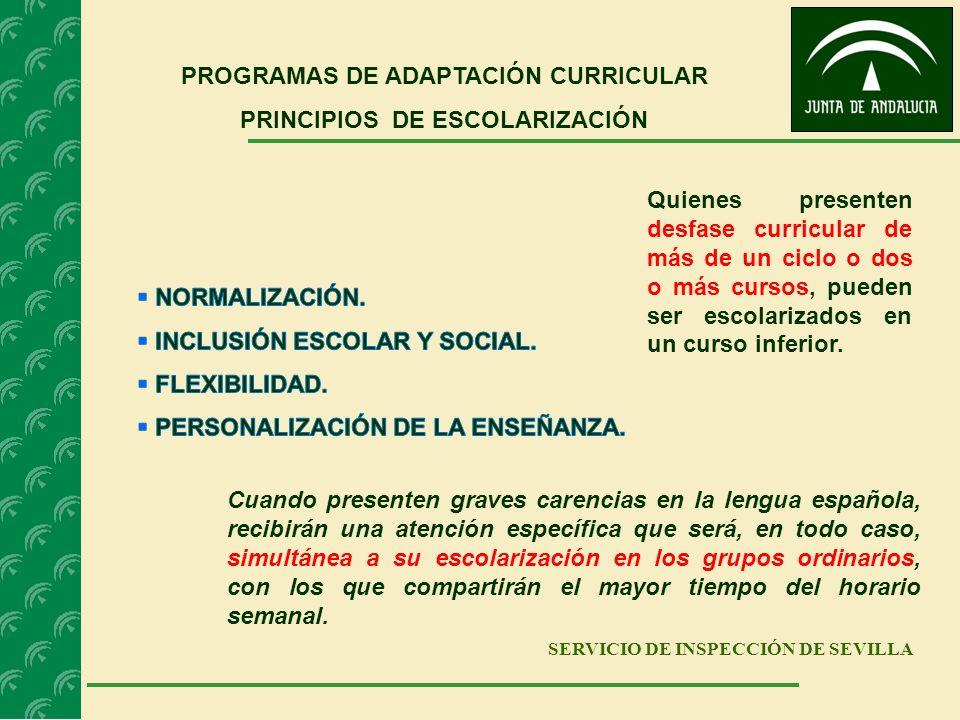 PROGRAMAS DE ADAPTACIÓN CURRICULAR PRINCIPIOS DE ESCOLARIZACIÓN