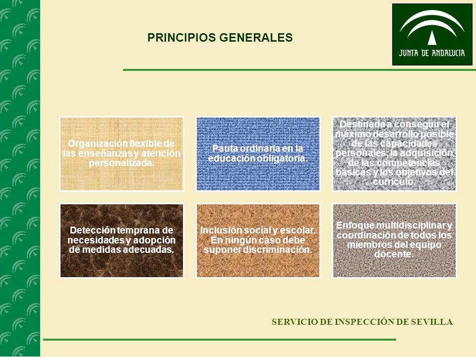 PRINCIPIOS GENERALES SERVICIO DE INSPECCIÓN DE SEVILLA