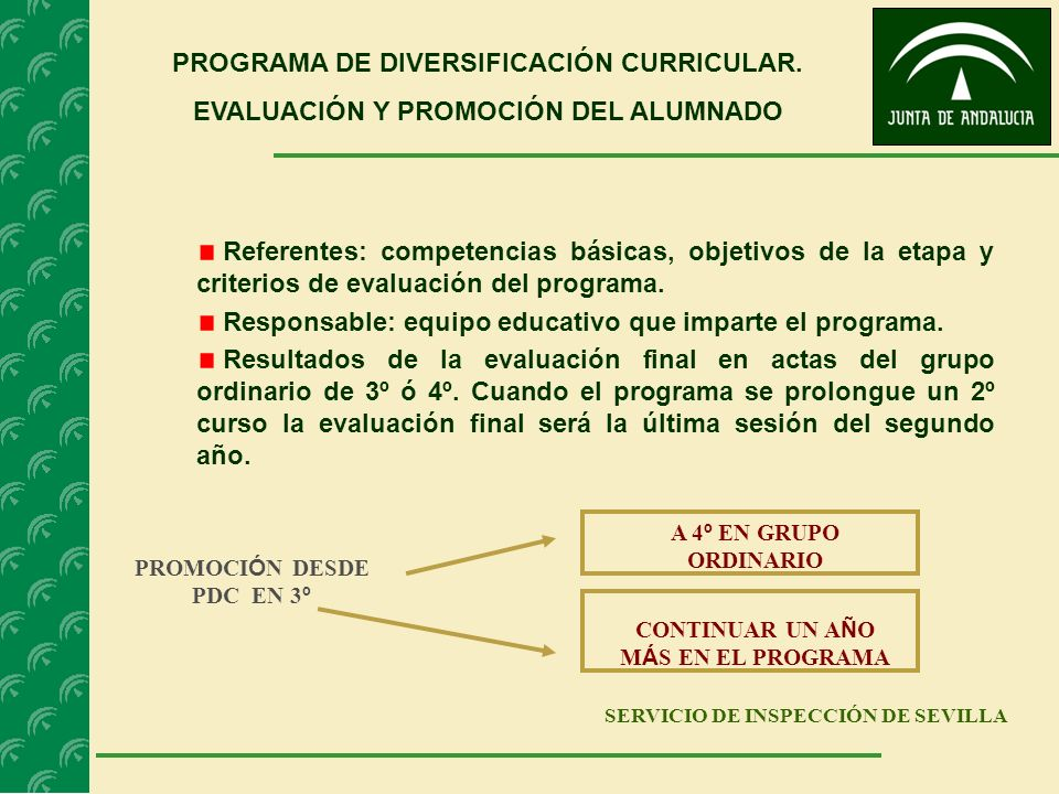 PROGRAMA DE DIVERSIFICACIÓN CURRICULAR.