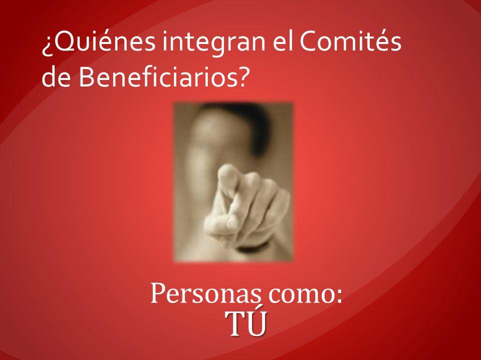 ¿Quiénes integran el Comités de Beneficiarios