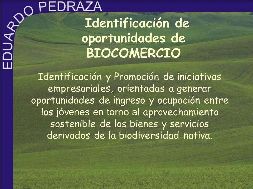 Identificación de oportunidades de BIOCOMERCIO