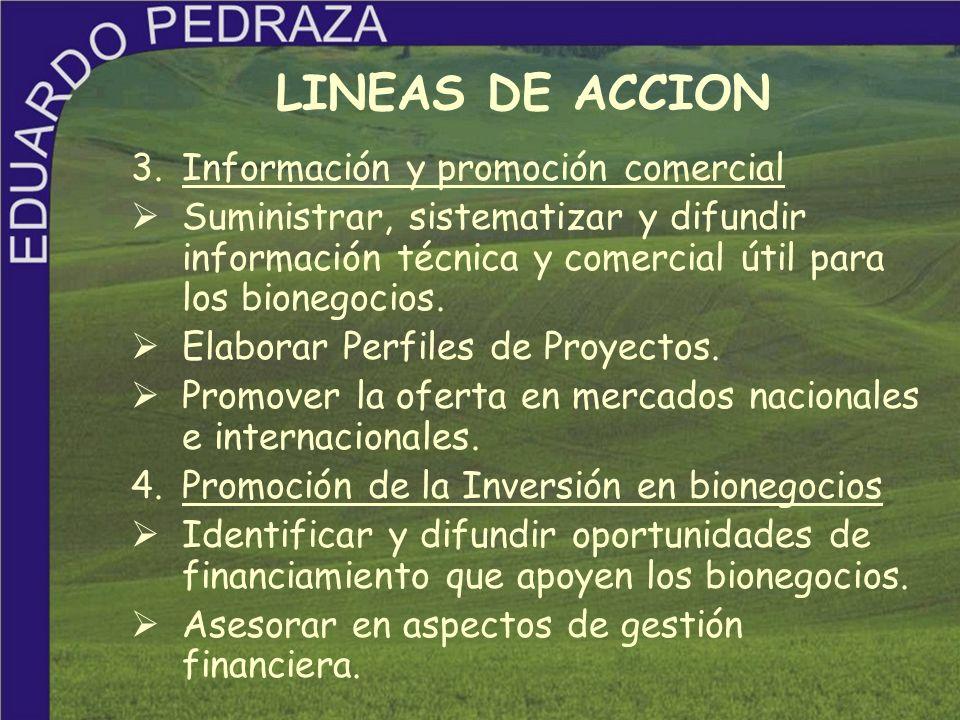 LINEAS DE ACCION 3. Información y promoción comercial