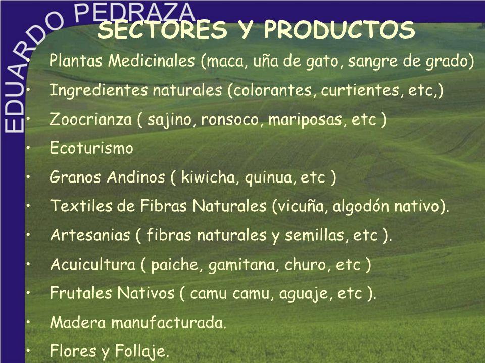 SECTORES Y PRODUCTOS Plantas Medicinales (maca, uña de gato, sangre de grado) Ingredientes naturales (colorantes, curtientes, etc,)