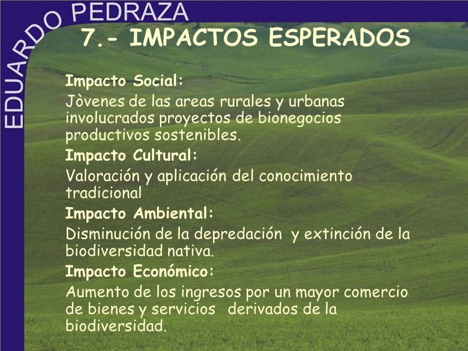 7.- IMPACTOS ESPERADOS Impacto Social: