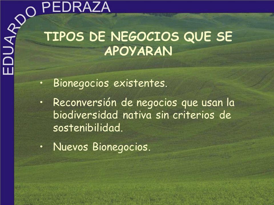 TIPOS DE NEGOCIOS QUE SE APOYARAN