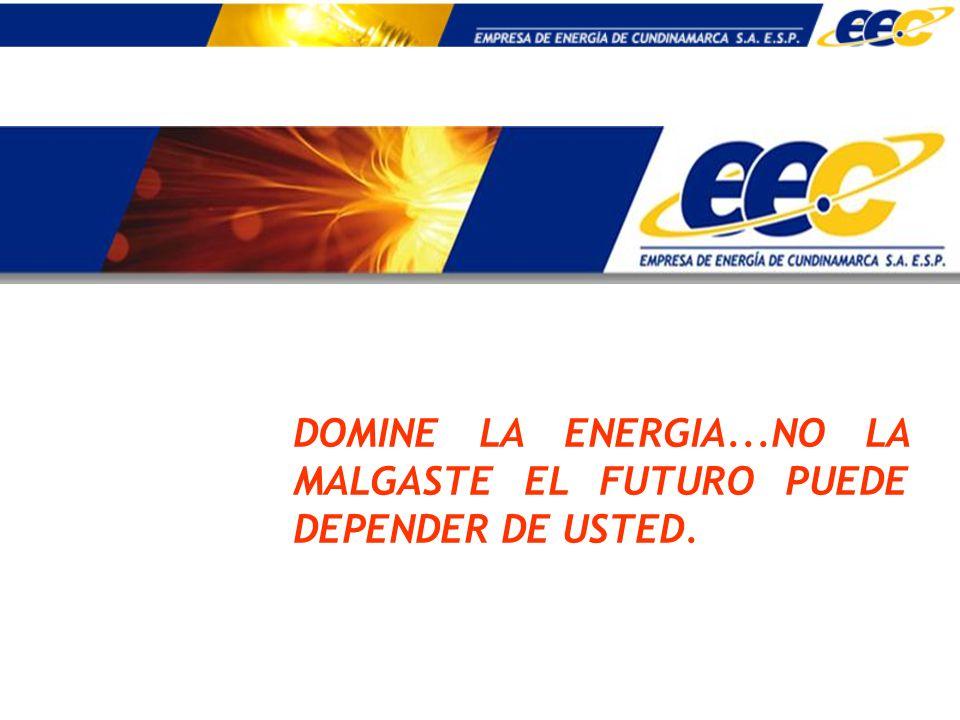 DOMINE LA ENERGIA...NO LA MALGASTE EL FUTURO PUEDE DEPENDER DE USTED.