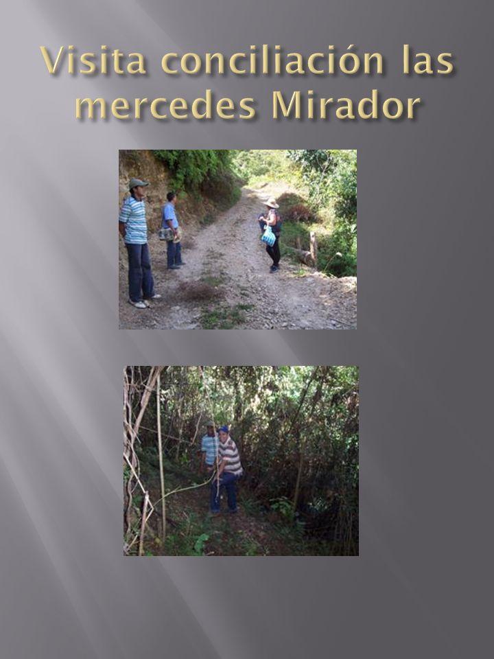 Visita conciliación las mercedes Mirador