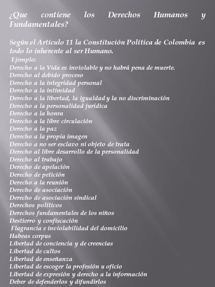 ¿Que contiene los Derechos Humanos y Fundamentales