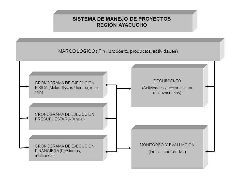 SISTEMA DE MANEJO DE PROYECTOS REGIÓN AYACUCHO