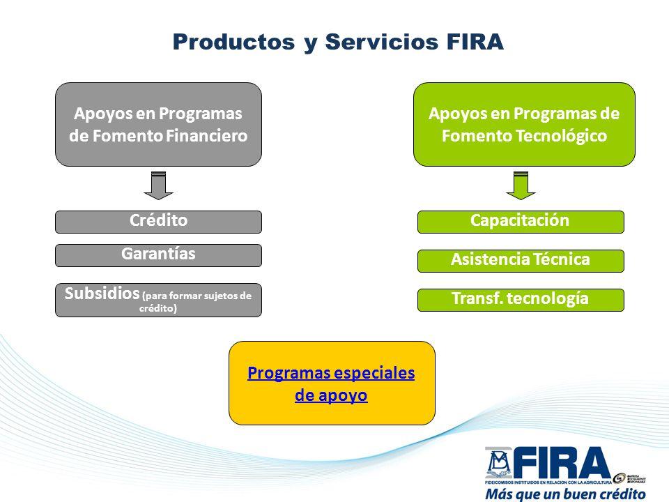 Productos y Servicios FIRA :