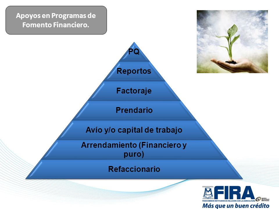 Apoyos en Programas de Fomento Financiero.