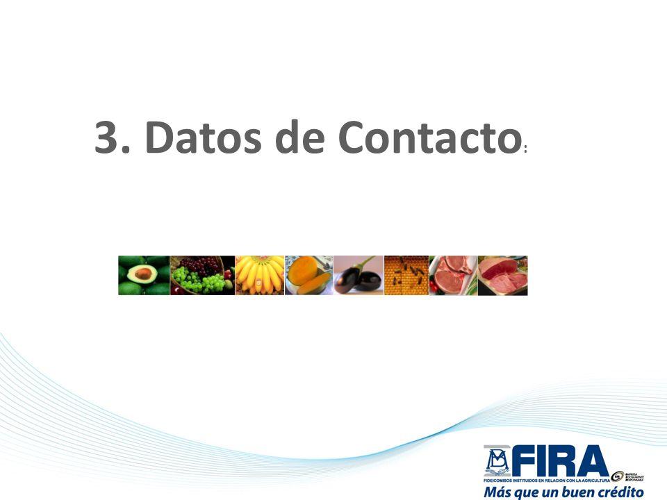 3. Datos de Contacto: