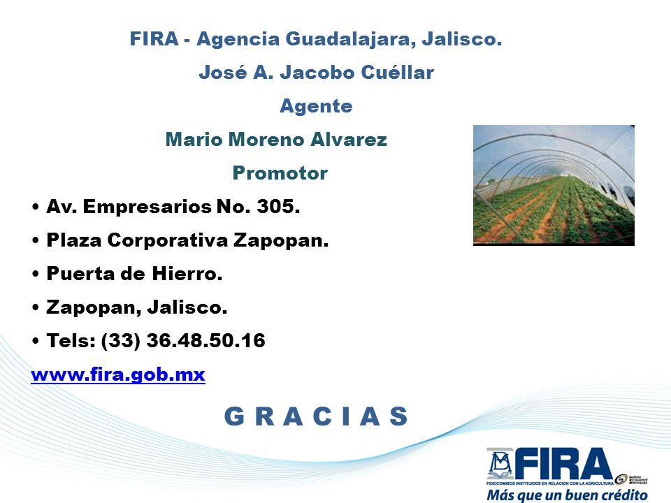 FIRA - Agencia Guadalajara, Jalisco.
