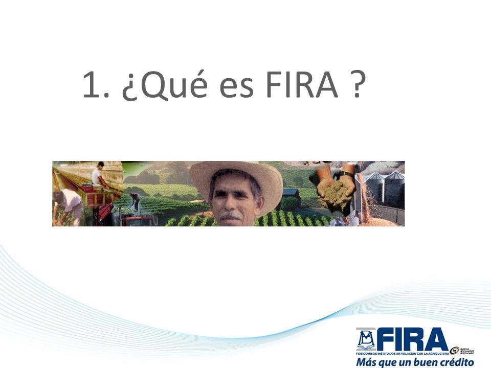 ¿Qué es FIRA