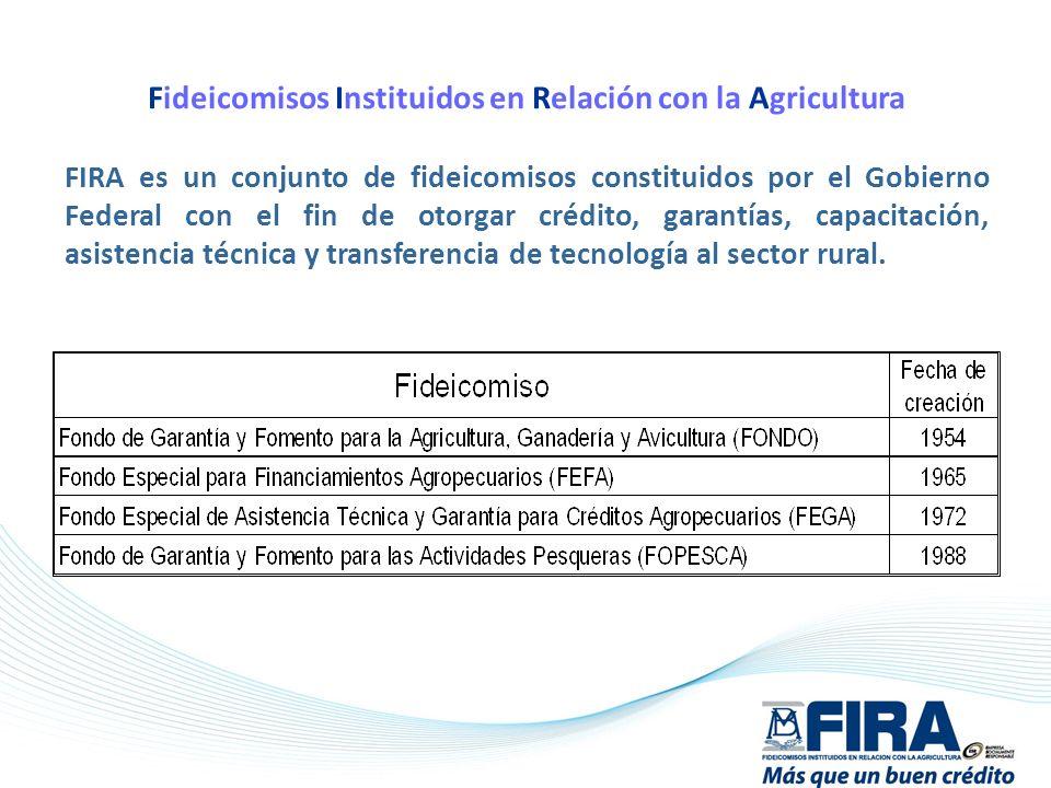 Fideicomisos Instituidos en Relación con la Agricultura