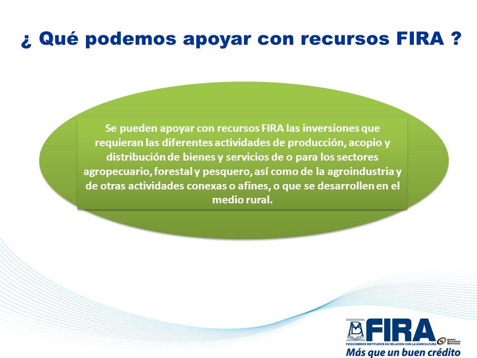 ¿ Qué podemos apoyar con recursos FIRA