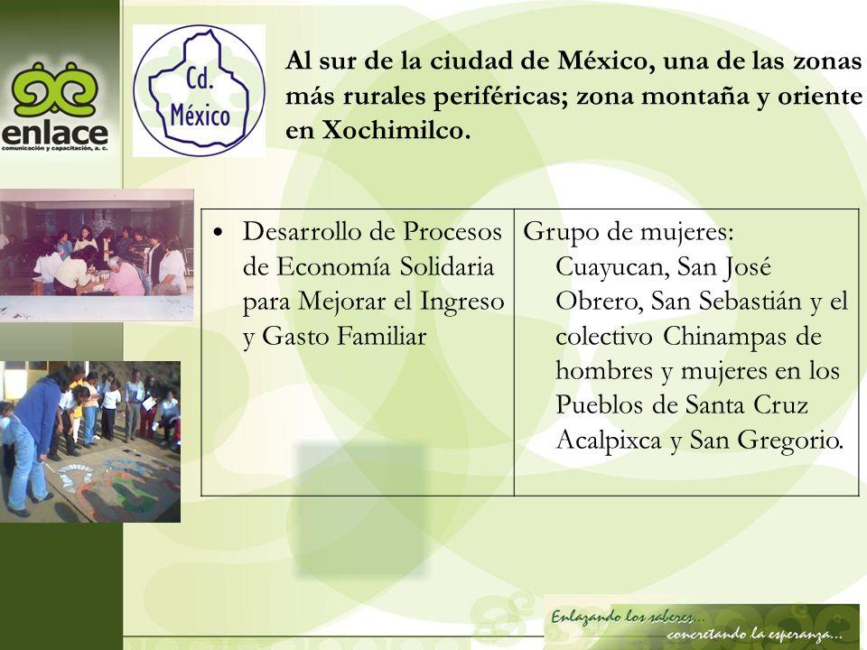 Al sur de la ciudad de México, una de las zonas