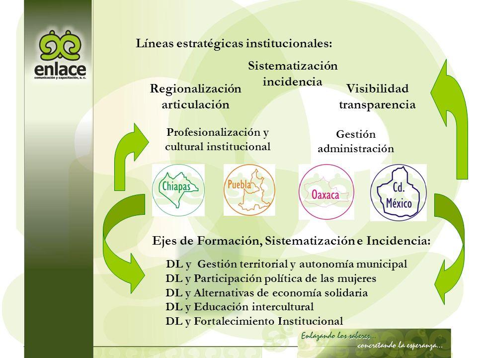 Líneas estratégicas institucionales: