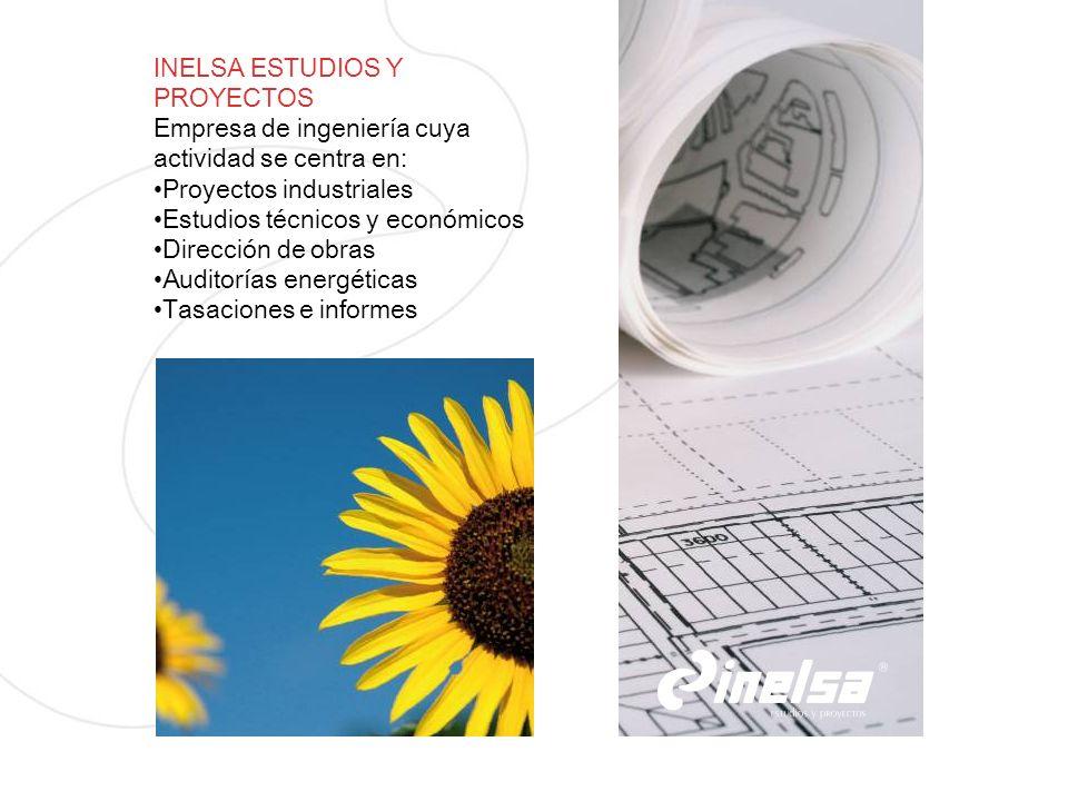 INELSA ESTUDIOS Y PROYECTOS