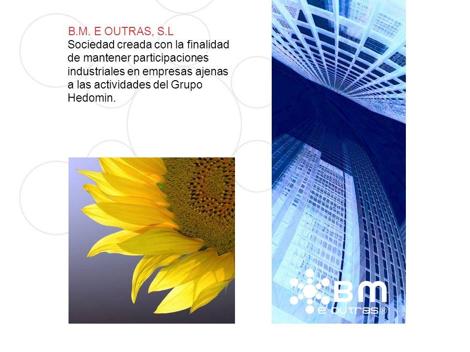 B.M. E OUTRAS, S.L Sociedad creada con la finalidad.