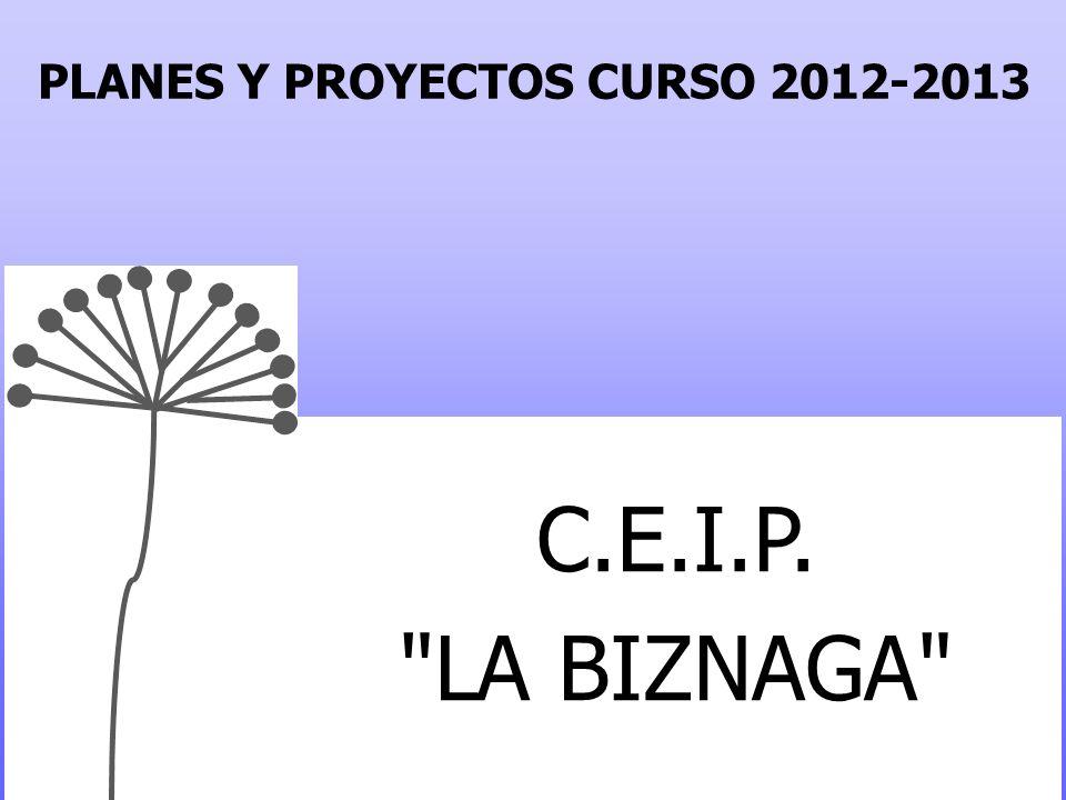 PLANES Y PROYECTOS CURSO 2012-2013