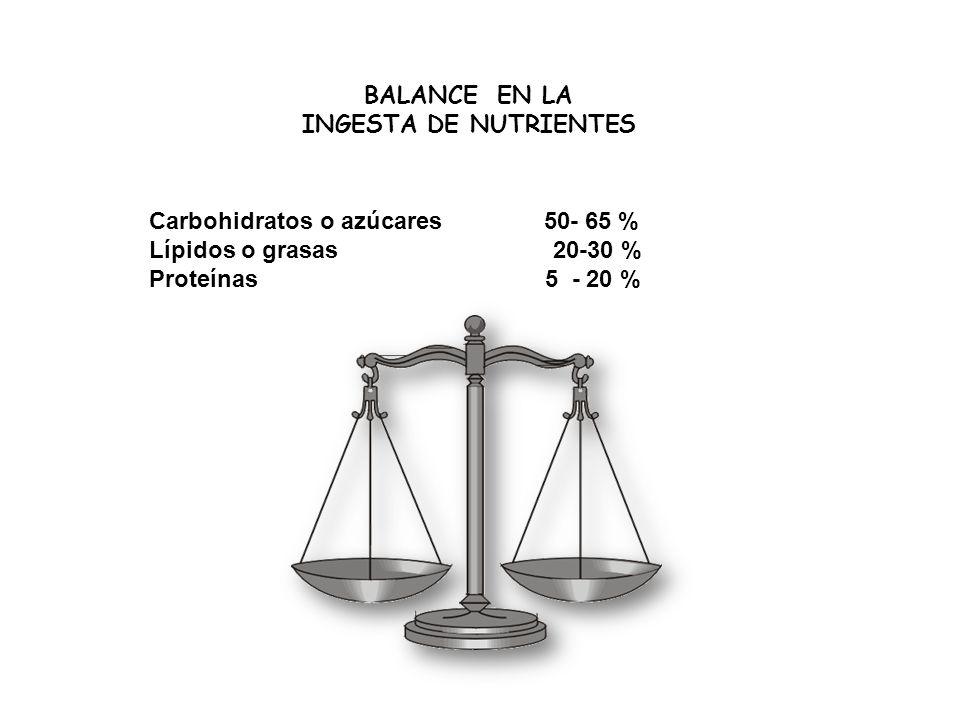BALANCE EN LA INGESTA DE NUTRIENTES