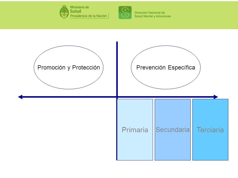 Primaria Terciaria Secundaria Promoción y Protección