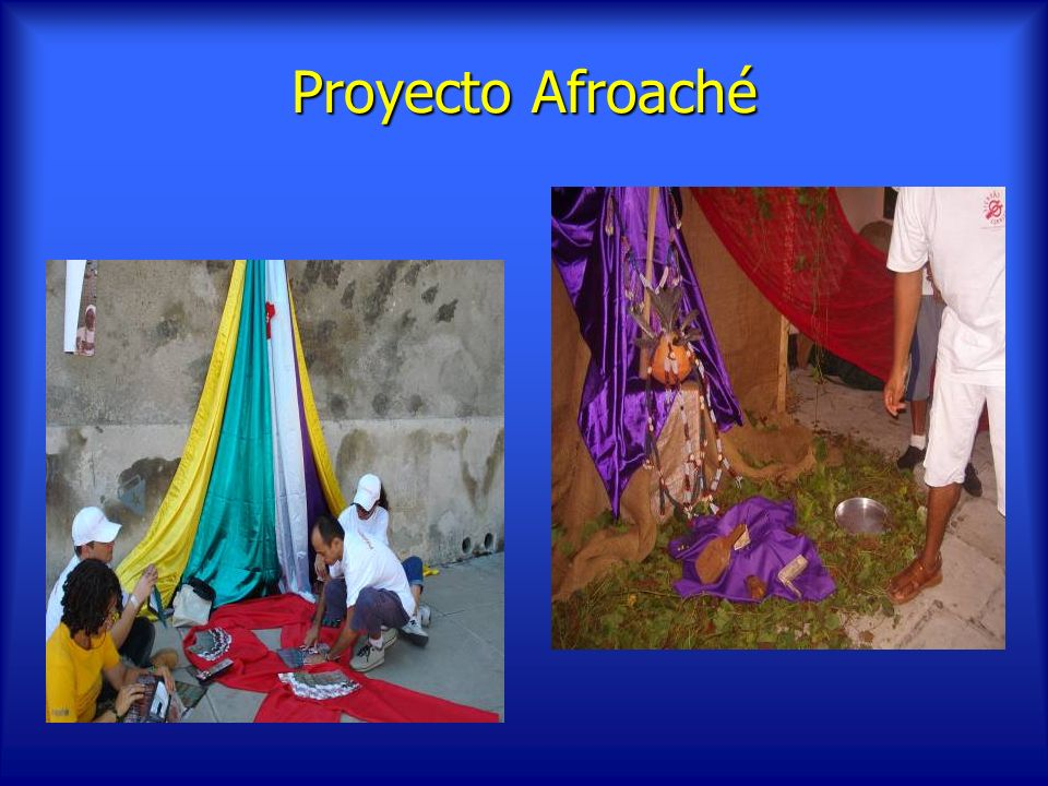 Proyecto Afroaché