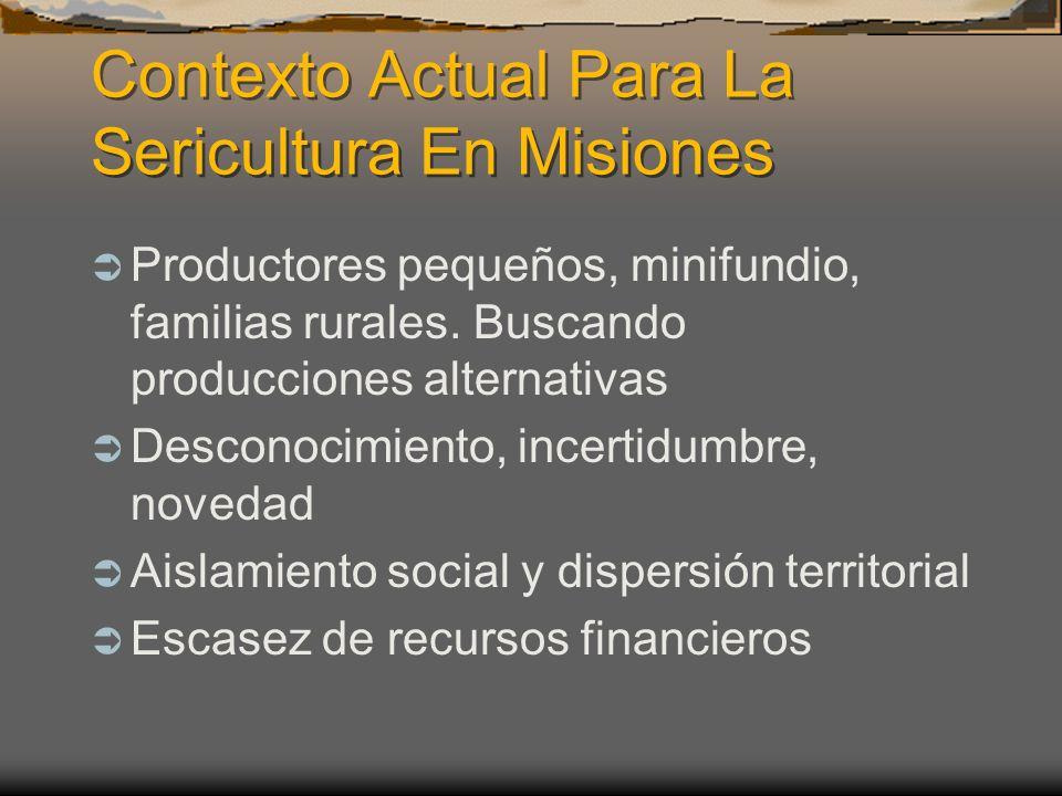 Contexto Actual Para La Sericultura En Misiones