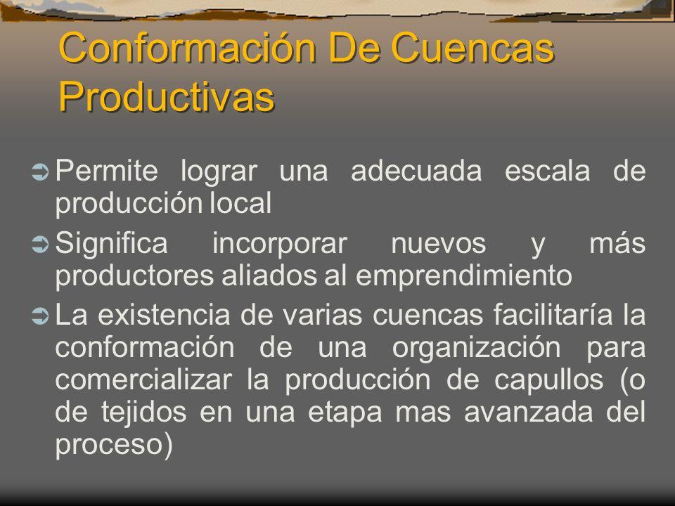 Conformación De Cuencas Productivas