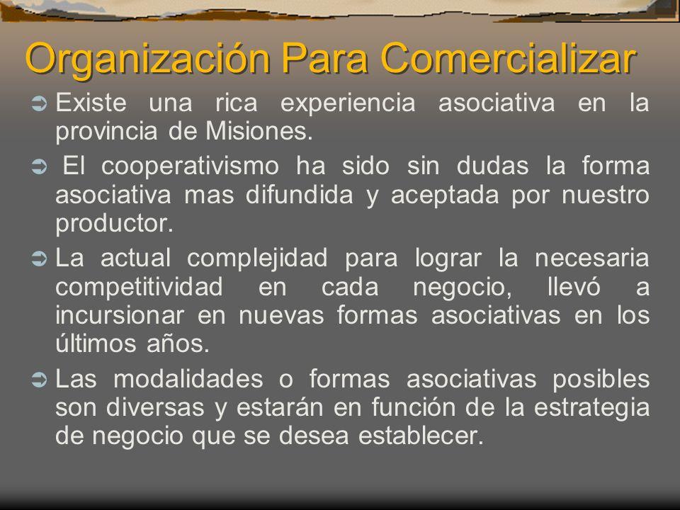 Organización Para Comercializar