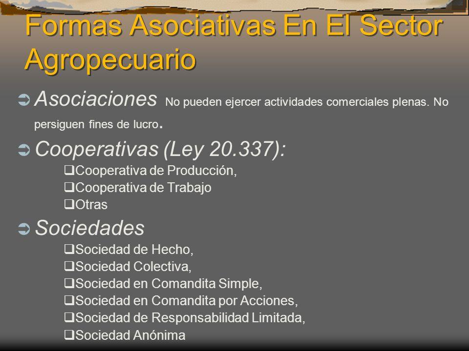 Formas Asociativas En El Sector Agropecuario