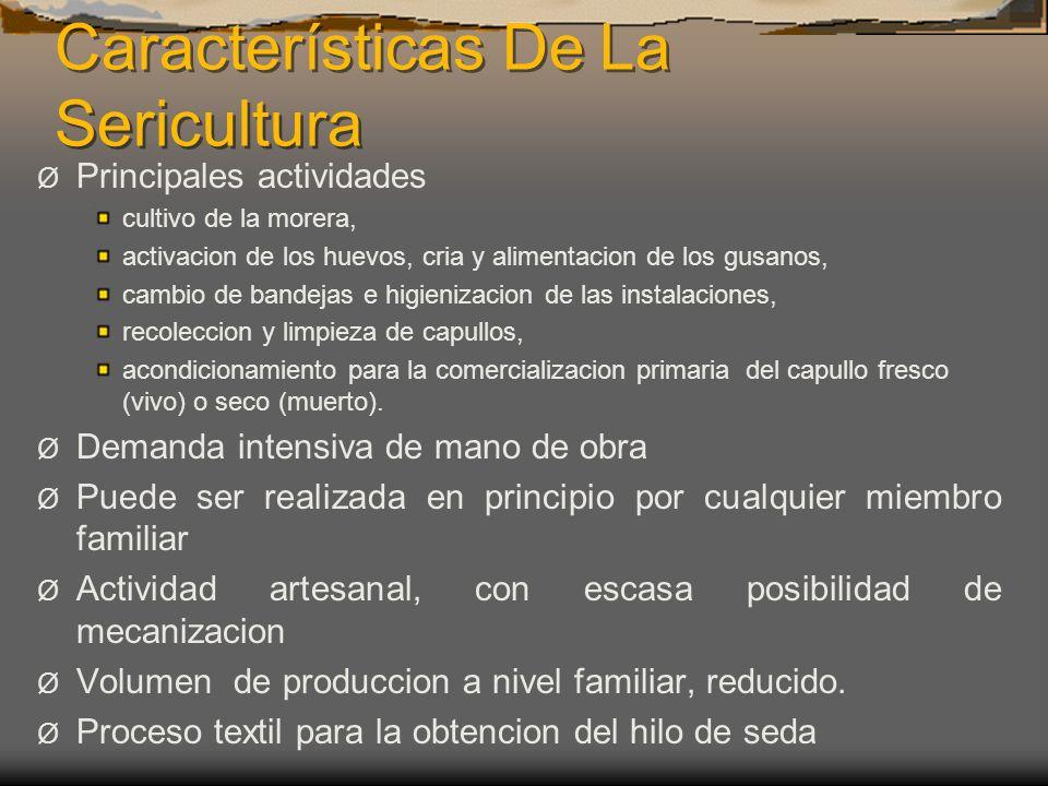 Características De La Sericultura