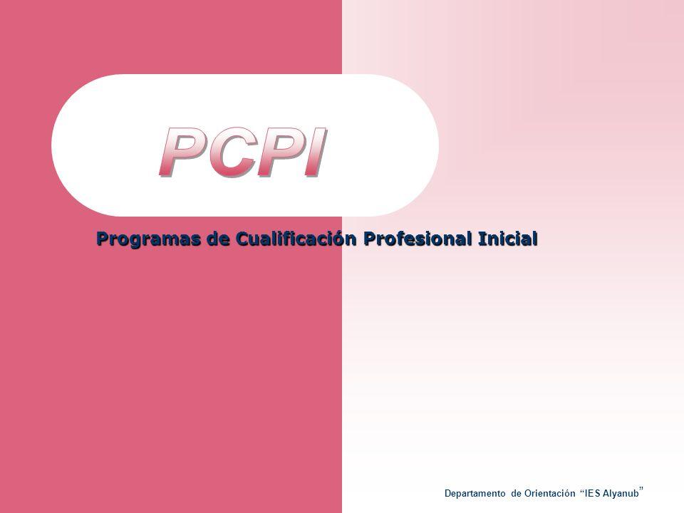 PCPI Programas de Cualificación Profesional Inicial