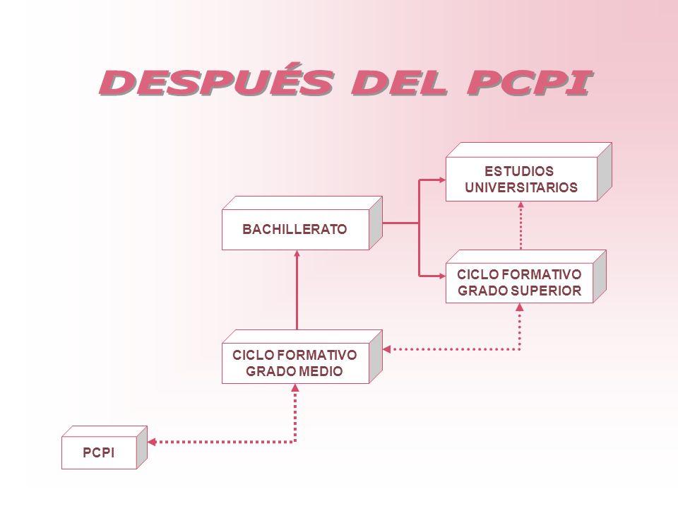 DESPUÉS DEL PCPI ESTUDIOS UNIVERSITARIOS BACHILLERATO CICLO FORMATIVO