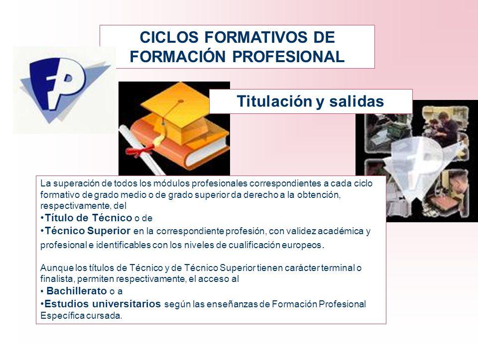 CICLOS FORMATIVOS DE FORMACIÓN PROFESIONAL