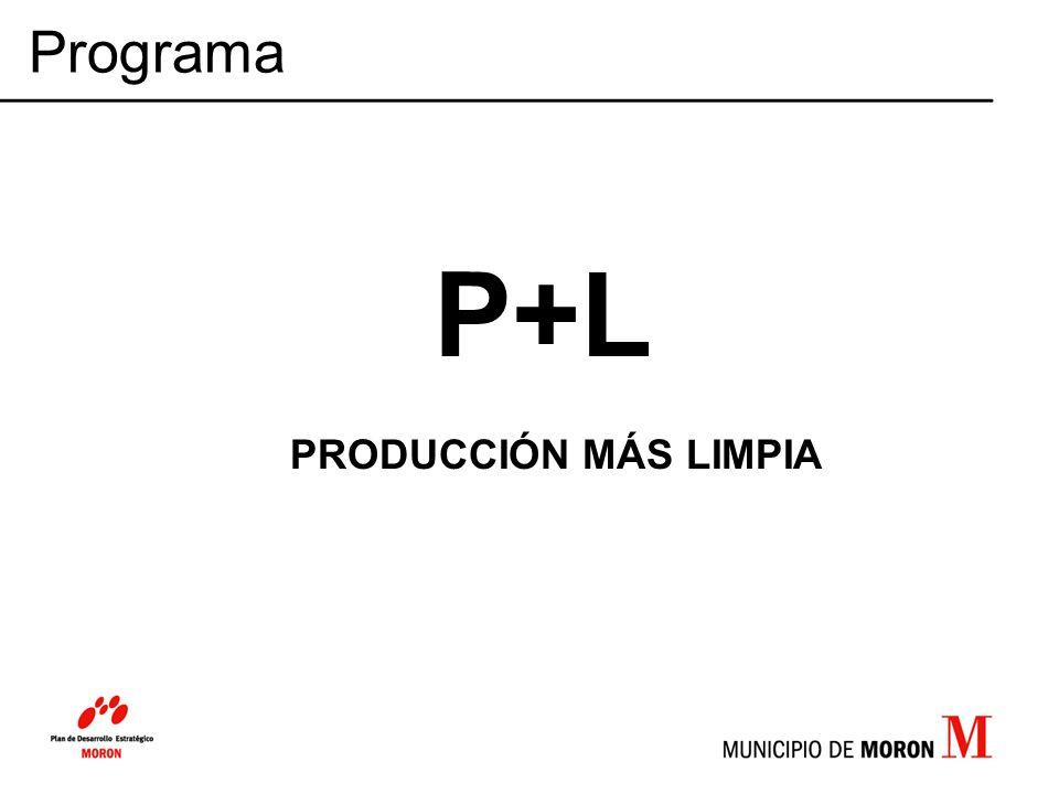 Programa P+L PRODUCCIÓN MÁS LIMPIA