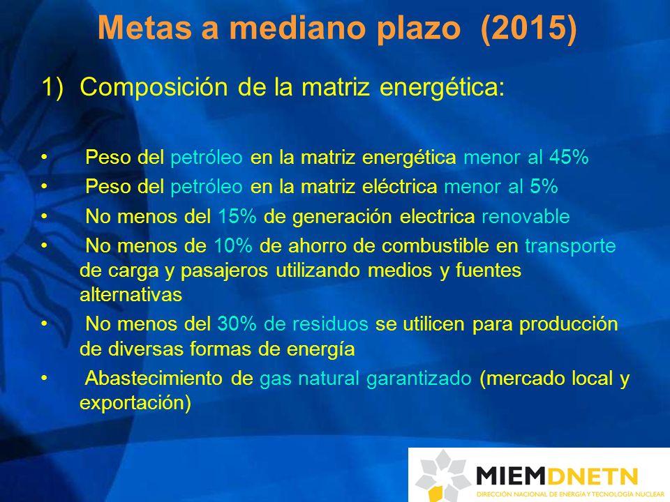 Metas a mediano plazo (2015)
