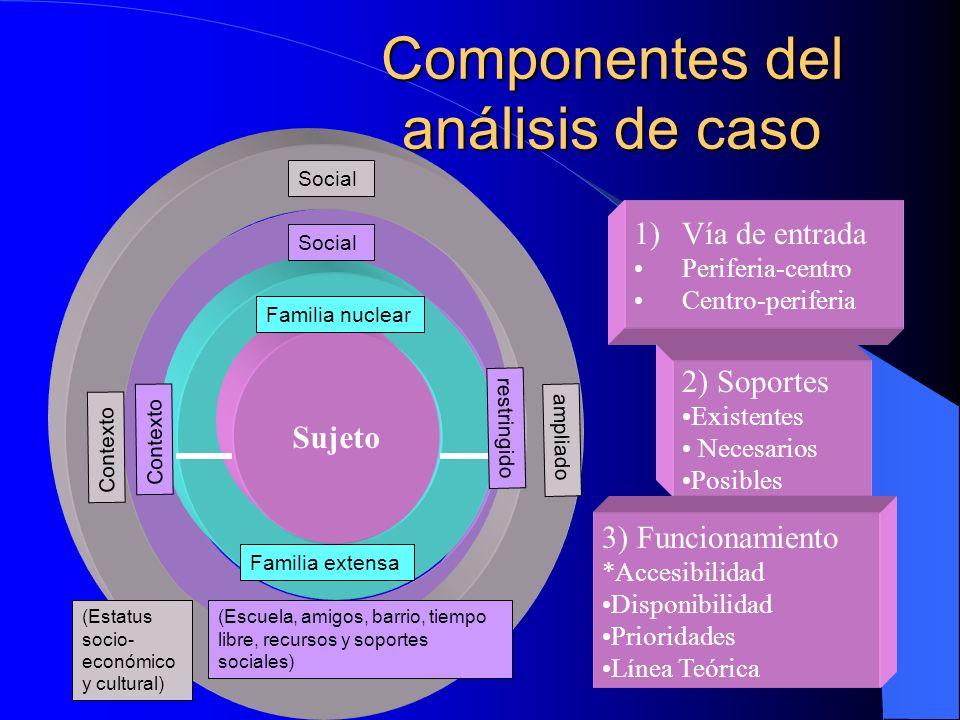 Componentes del análisis de caso