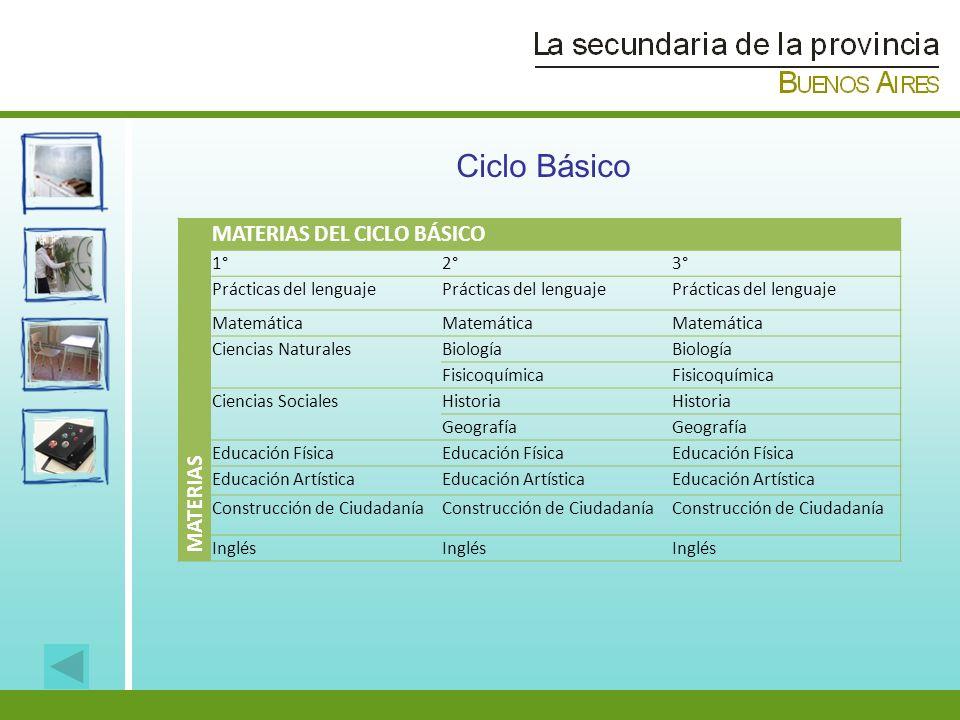 Ciclo Básico MATERIAS DEL CICLO BÁSICO MATERIAS 1° 2° 3°